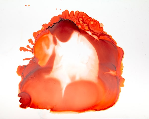 Principle Responds Art | Suiko Art