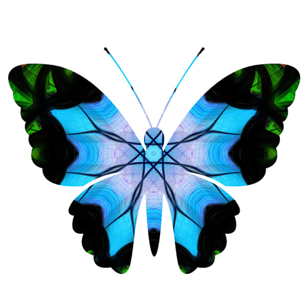 Blue Abstract Butterfly Framed