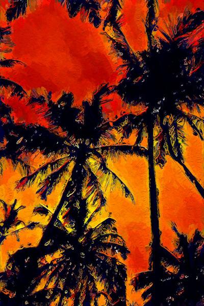Dawnparadise