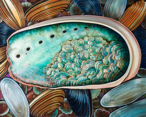 Abalone Shell Art | miaprattfineart.com