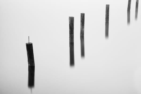 Old Pilings in the Fog, Tacoma, Washington, 2014