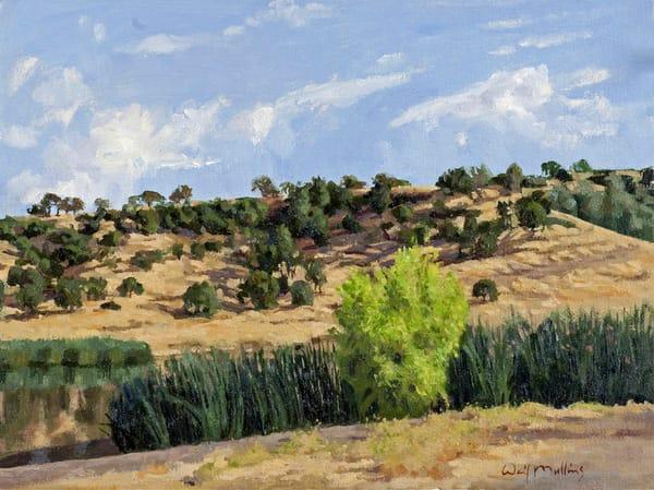 Horseshoe Lake, Morning  Art   Waif Mullins Art