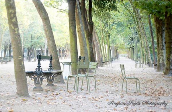 Morning Light At Jardin Du Luxembourg Art   AngsanaSeeds Photography