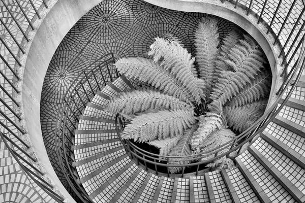 Spirals Photograph