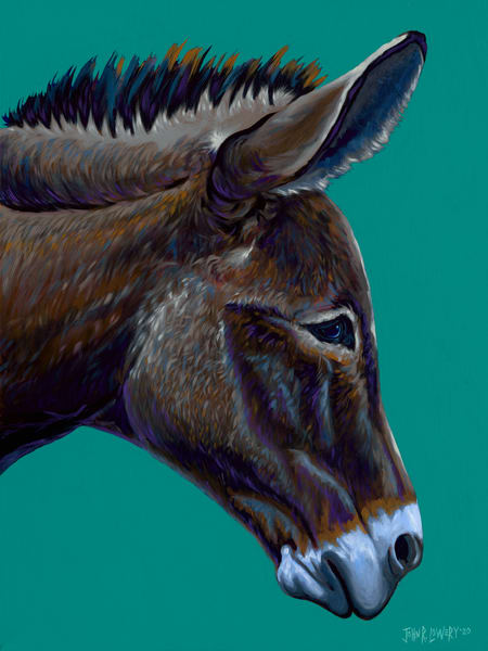 Original painting of a side view of a donkey head for sale as art prints.