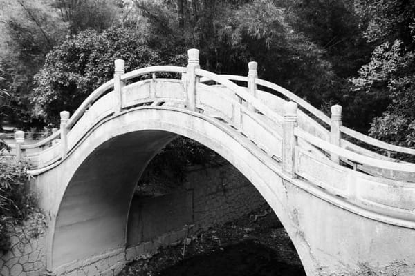 Bridge In The Park  Photography Art | Carol's Little World