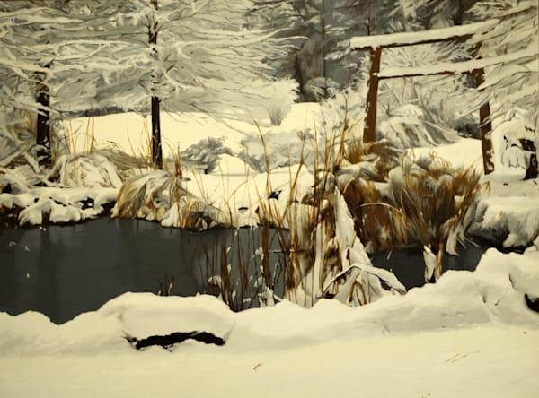 Pond Garden In Winter Art   Helen Vaughn Fine Art