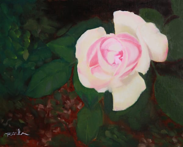 Peace Rose Art   Pearl White Studio