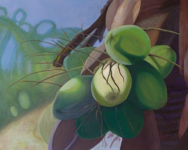 Green Coconuts Art   Pearl White Studio