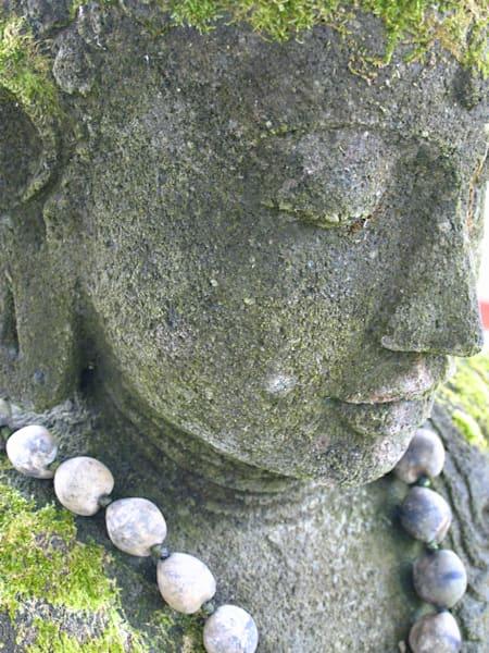 Graceful Buddha | Aa008 Art | Pictures Plus