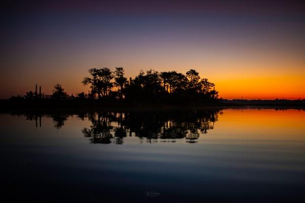Florida Gold Photography Art | Vitamin Sea Photography
