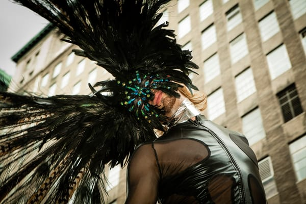 Latex And Feathers Photography Art   Ed Lefkowicz Photography