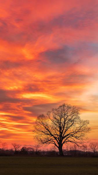 The Blaze Verto Photography Art | Teaga Photo