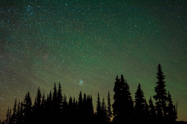 Airglow Trees Rainier Photography Art   Call of the Mountains Photography
