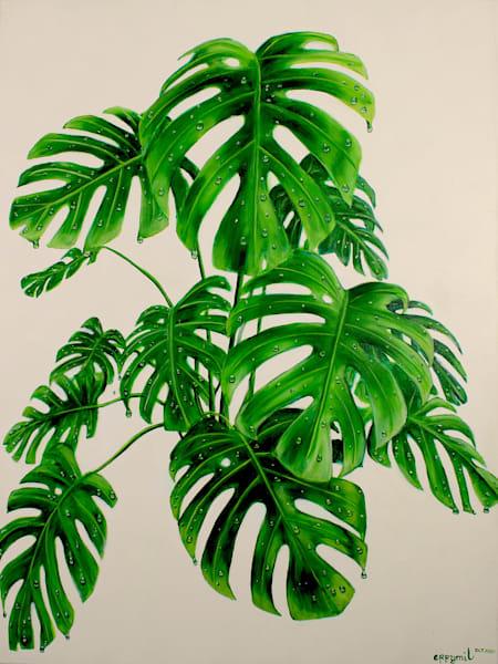 Monstera Deliciosa Plant Art | errymilart