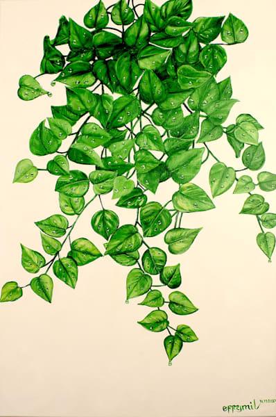 Pothos Hanging Bush Art | errymilart