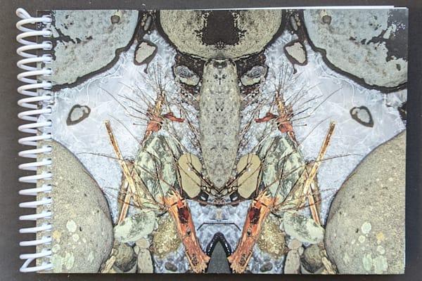 Mirror 1166_Sleeper In Ice 7x5 Notebook