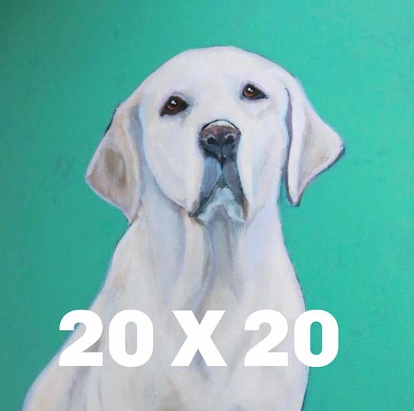 Dog A Day 20 X 20  | Lesli DeVito