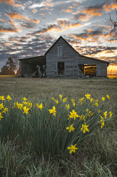 Farm Awakening Photography Art | kramkranphoto