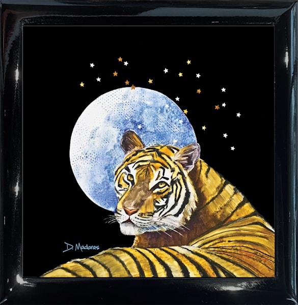 Eye Of The Tiger Square Black Keepsake Box | Madaras Gallery