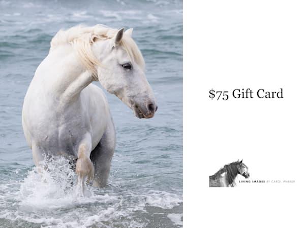 $75 Gift Card | Living Images by Carol Walker, LLC