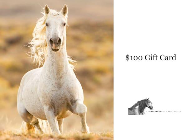 $100 Gift Card | Living Images by Carol Walker, LLC