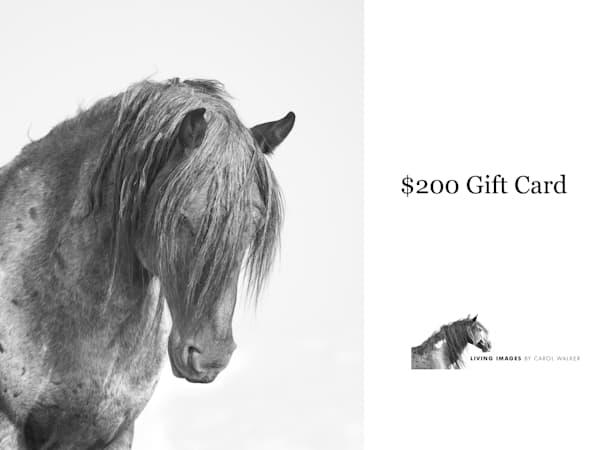 $200 Gift Card | Living Images by Carol Walker, LLC