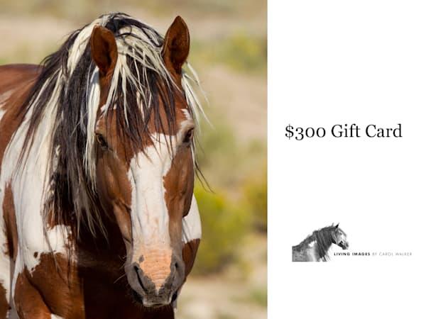 $300 Gift Card | Living Images by Carol Walker, LLC