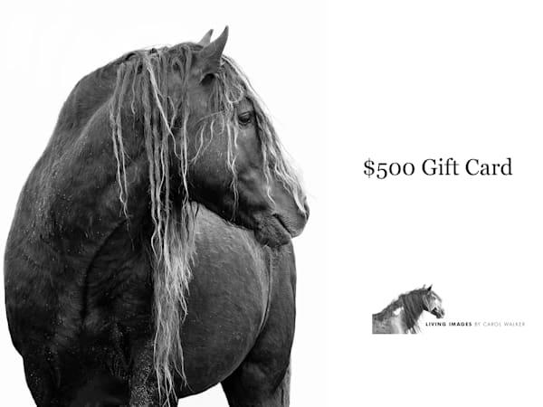 $500 Gift Card | Living Images by Carol Walker, LLC