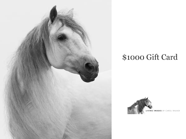 $1000 Gift Card | Living Images by Carol Walker, LLC