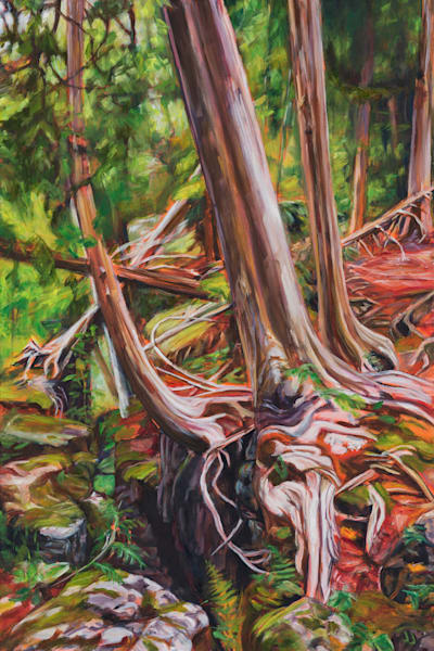 Lean In, original oil painting by Janet Jardine, featuring cedar trees leaning in as they cling to a crag of the Niagara Escarpment at Crawford Lake Conservation Area, along the Bruce Trail 20x30 inches, standard canvas, framed or unframed