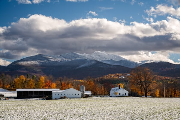 West Farm Snowliage