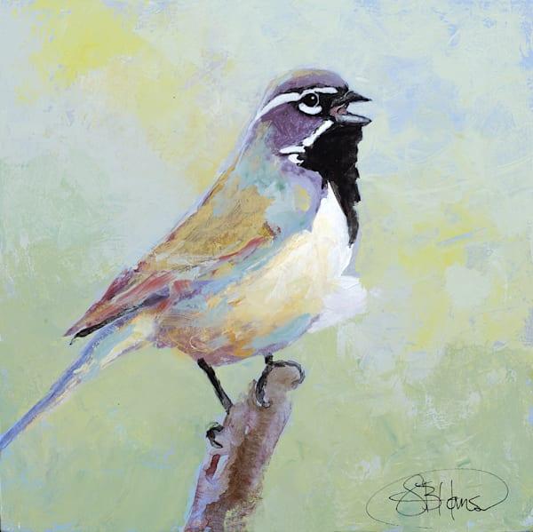 Black-Throated Sparrow, artwork by Sarah B Hansen