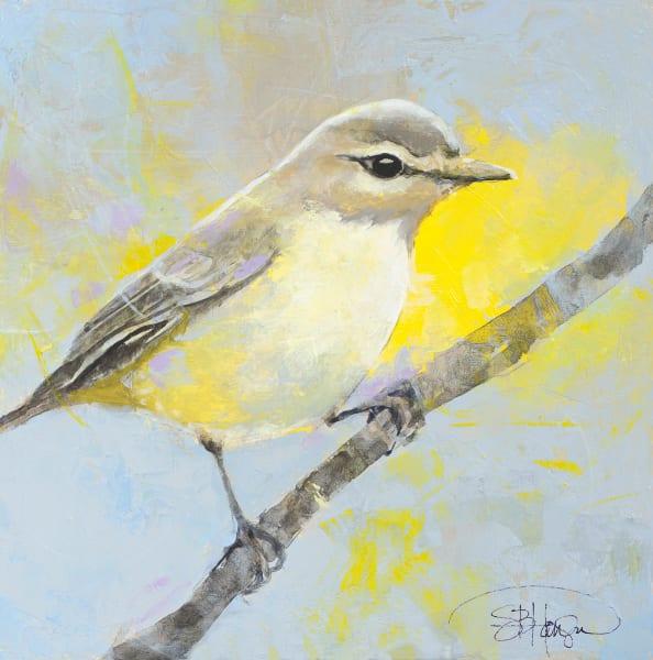 Warbling Vireo bird art by Sarah B Hansen