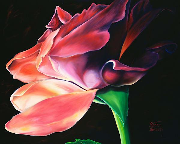 Amorous Art | Hackley Fine Art