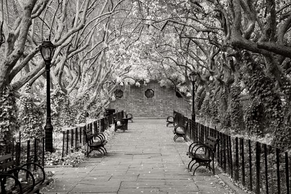 Conservatory Walkway Central Park NYC