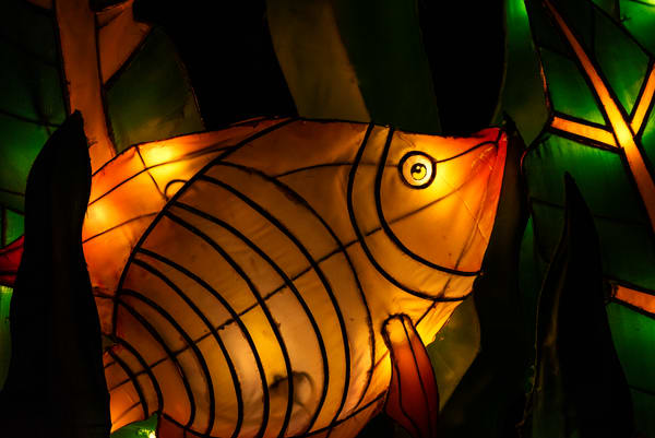 Fish lantern sculpture