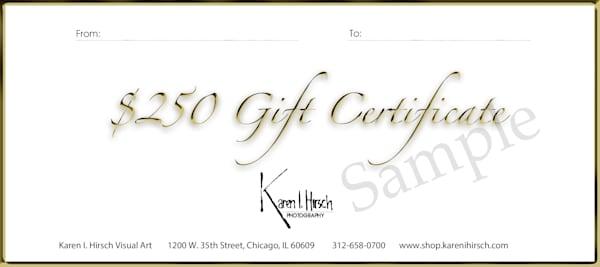 $250 Gift Card | karenihirsch