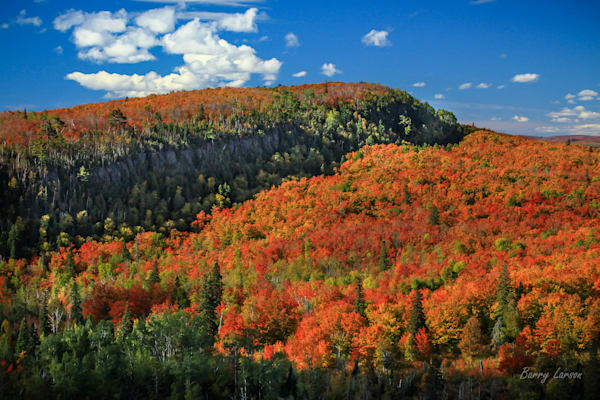 Oberg Mountain, Fall Colors