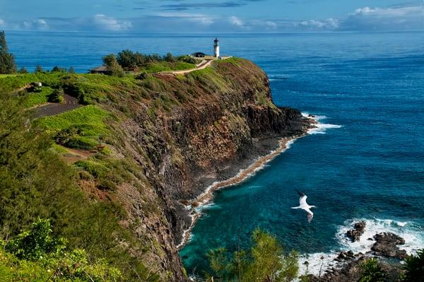 Kilauea Lighthouse Lookout Photography Art | Ed Sancious - Stillness In Change