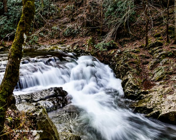 Waterfall Photography Art | N2 the Woods Photography - Nature and Wildlife Artwork