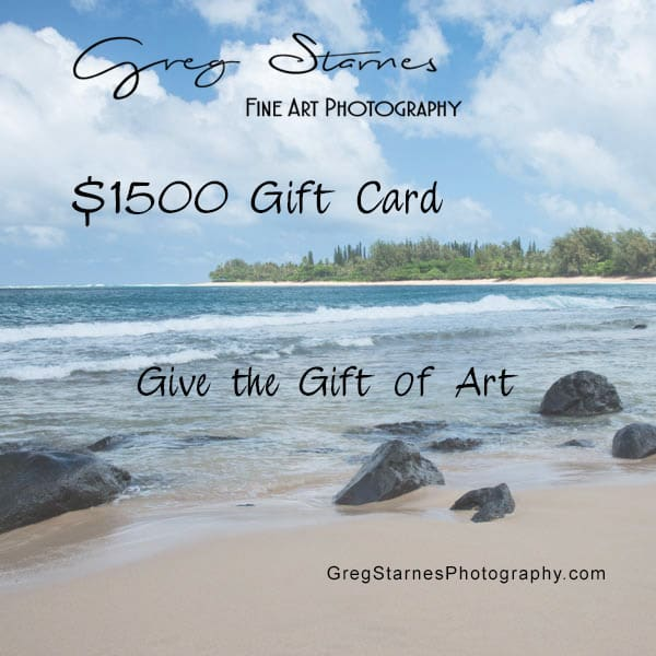 $1500 Gift Card | Greg Starnes Phtography