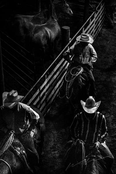 Two Horses Photography Art   Harry John Kerker Photo Artist