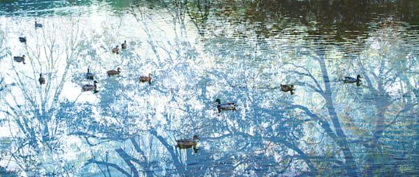 Azure Pond Art | Cincy Artwork
