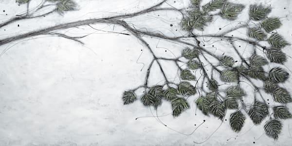 Bough Of The Evergreen Art   Julie Berthelot