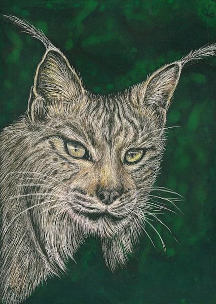 Iberian Lynx - Kathy Huberland