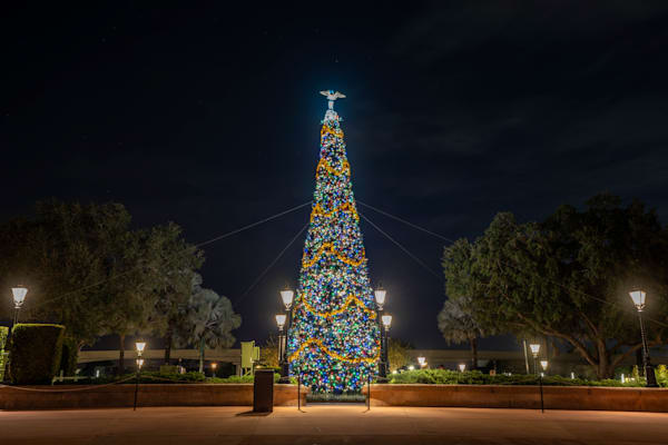 Epcot Christmas Tree 2020 Photography Art | William Drew Photography