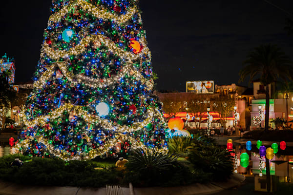 Decorated Christmas Tree At Hollywood Studios Photography Art | William Drew Photography