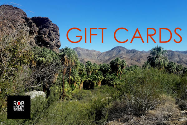 Gift Card Cover   Nfs | Rob Edley Welborn