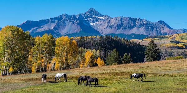 Horses in front of Wilson Peak near Telluride, Colorado.